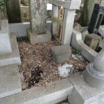 群馬県高崎市三ツ寺町の石上寺様にて、貼り石工事をしています。