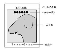 dog123