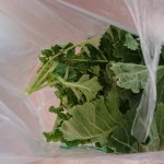 高崎市福島町のお客様に野菜をもらいました!