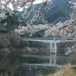 家内の実家で春を楽しんできました。 【桐生市 梅田町】